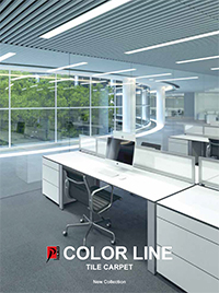 pdf catalog Color Line