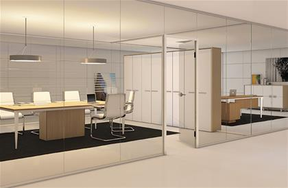 Frameless Partition
