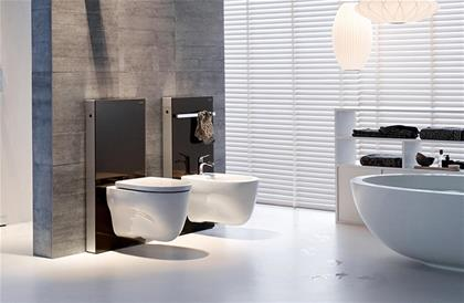 Geberit Monolith Sanitary for Wall Hung