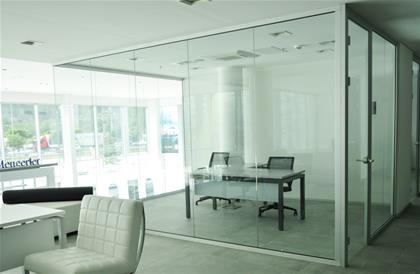 Frameless Partition System